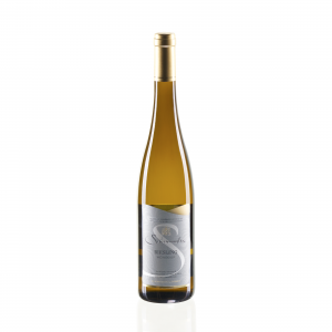 Riesling Weinbour